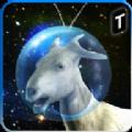 疯狂山羊太空冲撞